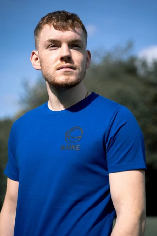 Mens-classic-organic-tshirt-royal-blue
